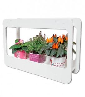 Mini Jardín de interior con luz LED para el crecimiento de las plantas
